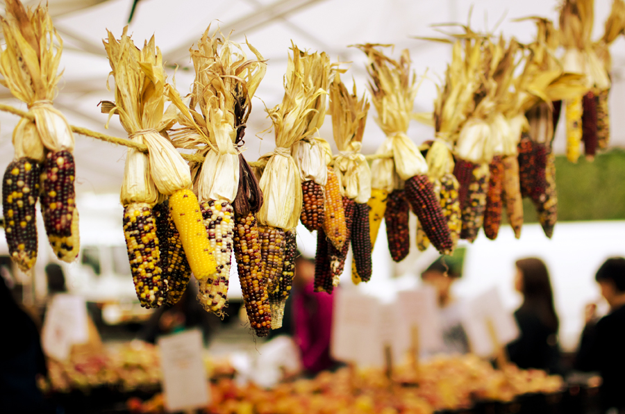 02-Ettible-NYC-Travel-Photography-Farmers-Market-02